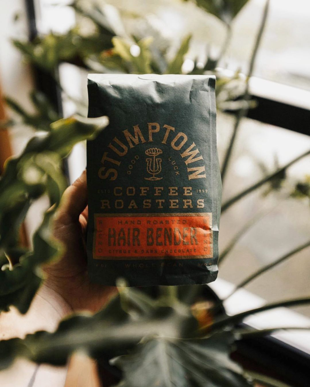 Stumptown Coffee Roasters Hair Bender Whole Bean Coffee 12 Oz In 2020 Stumptown Coffee Stumptown Coffee Roasters Coffee