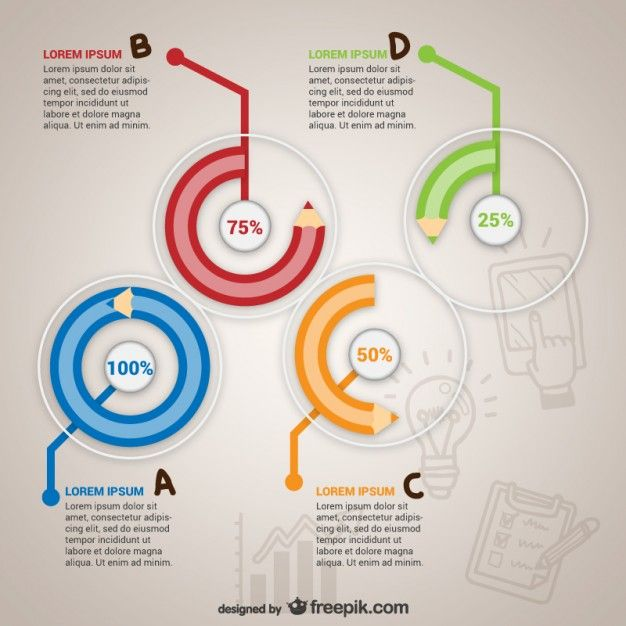 Education infography template