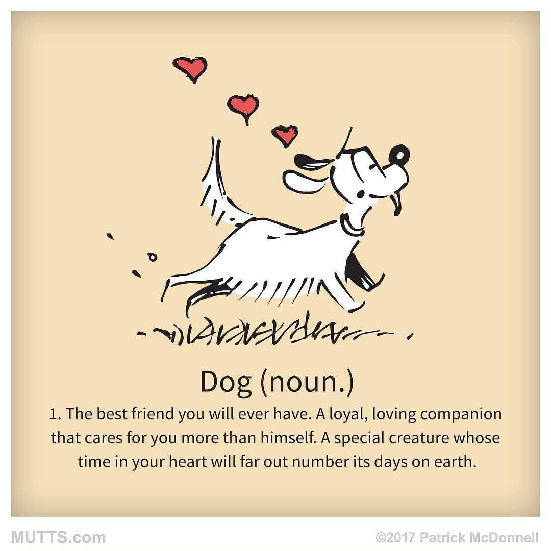 1 038 Likes 27 Comments Mutts Muttscomics On Instagram Share If You Love Your Dog Dog Quotes Dog Love Doggy