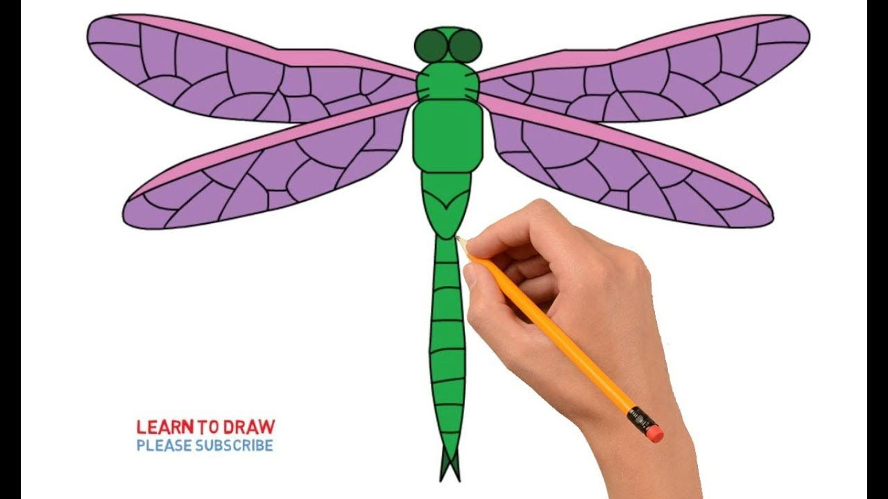 How to Draw a Dragonfly Step By Step Easy For Kids Fly