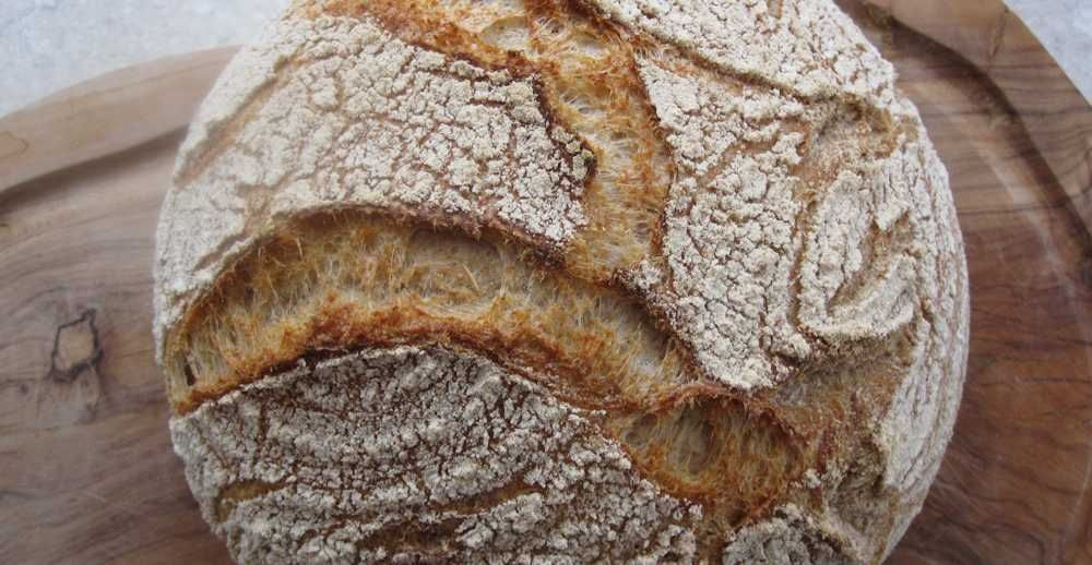 French country bread, pain de campagne, using wheat sourdough levain (starter). This sourdough French country style bread is crusty with an open crumb, best baked in Dutch oven.