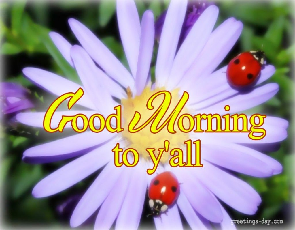 Httpgreetings daygood morning daily ecards photos and httpgreetings daygood morning daily m4hsunfo Images