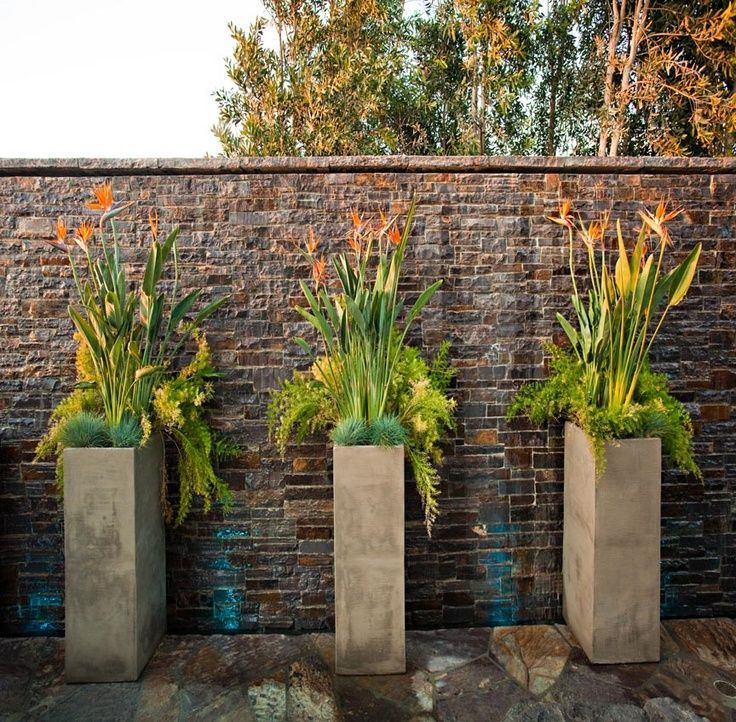 striking tall container arrangements to adorn a brick wall