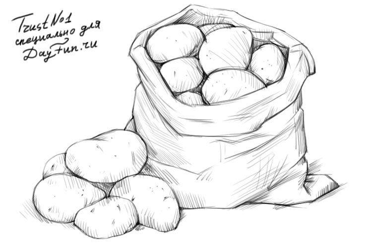 Как нарисовать картошку карандашом поэтапно 4 ...