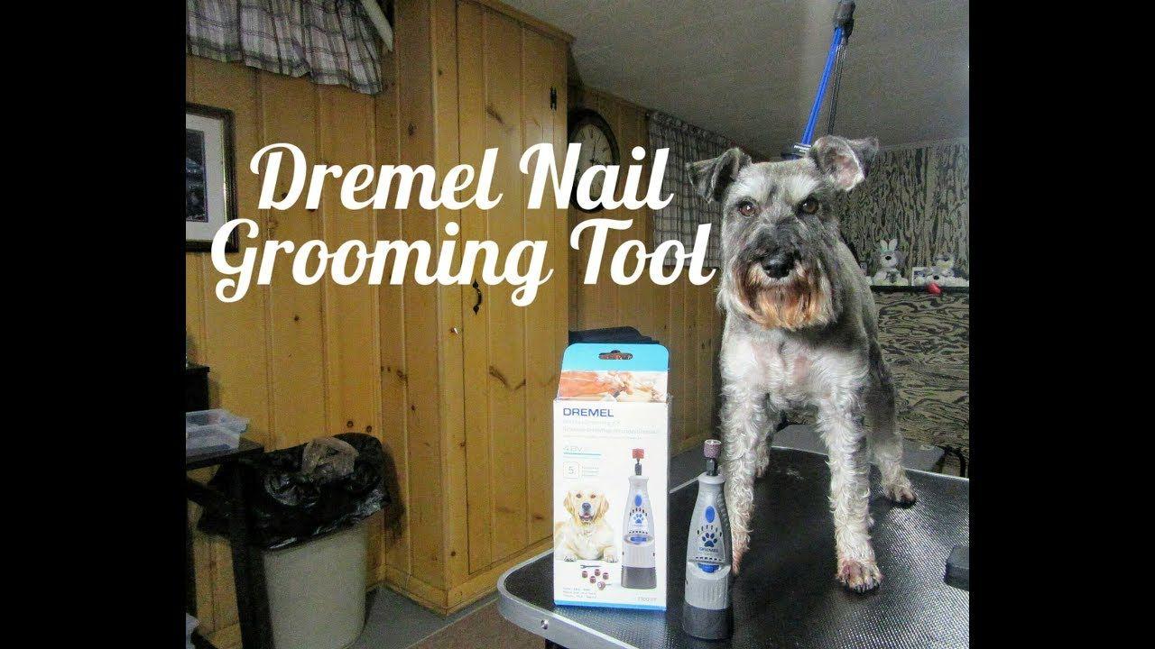 Dremel Pet Nail Grooming Tool Trimming The Boys Nails