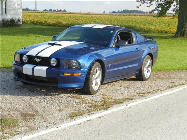 2009 Mustang GT, Love the inset headlight and the color how it is but what would be even better? White with Black or Dark Gray Stripes <3