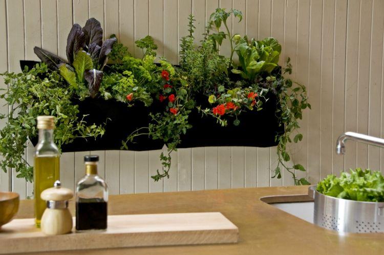Pflanzen In Der Kuche Tipps Rund Um Die Pflege Mit Bildern Krautergarten Drinnen Indoor Garten Zimmerpflanzen Ideen