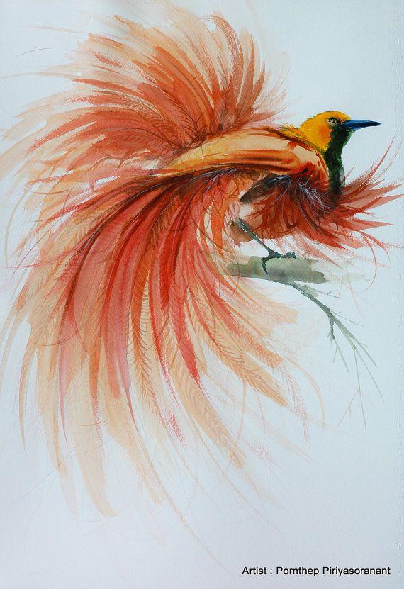 Oiseau De Paradis Oiseau Peinture Aquarelle Oiseau Art Art