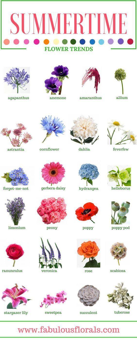 Spring & Summer Seasonal Flowers • How To DIY Wedding Flowers ...