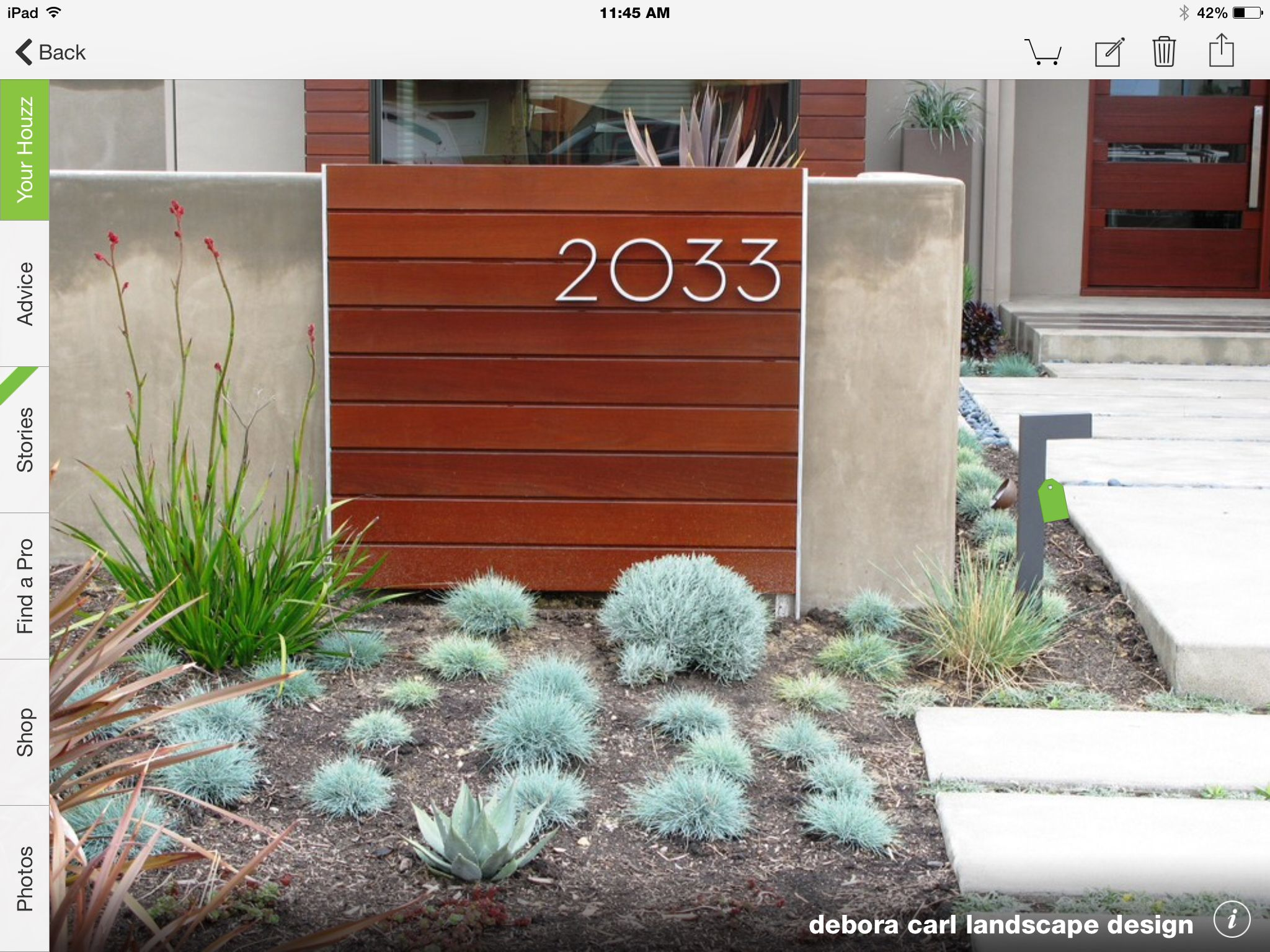 Drought Tolerant Landscape, Succulents, Mediterranean Garden, Houzz.com