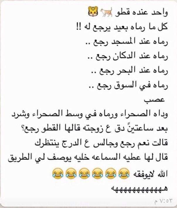 قطة صعب التعامل معاها Funny Study Quotes Jokes Quotes Funny Arabic Quotes