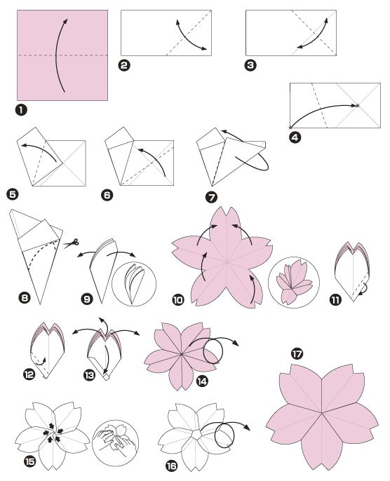 diagramme d u0026 39 origami de cerisier du japon       chine origami  fleur