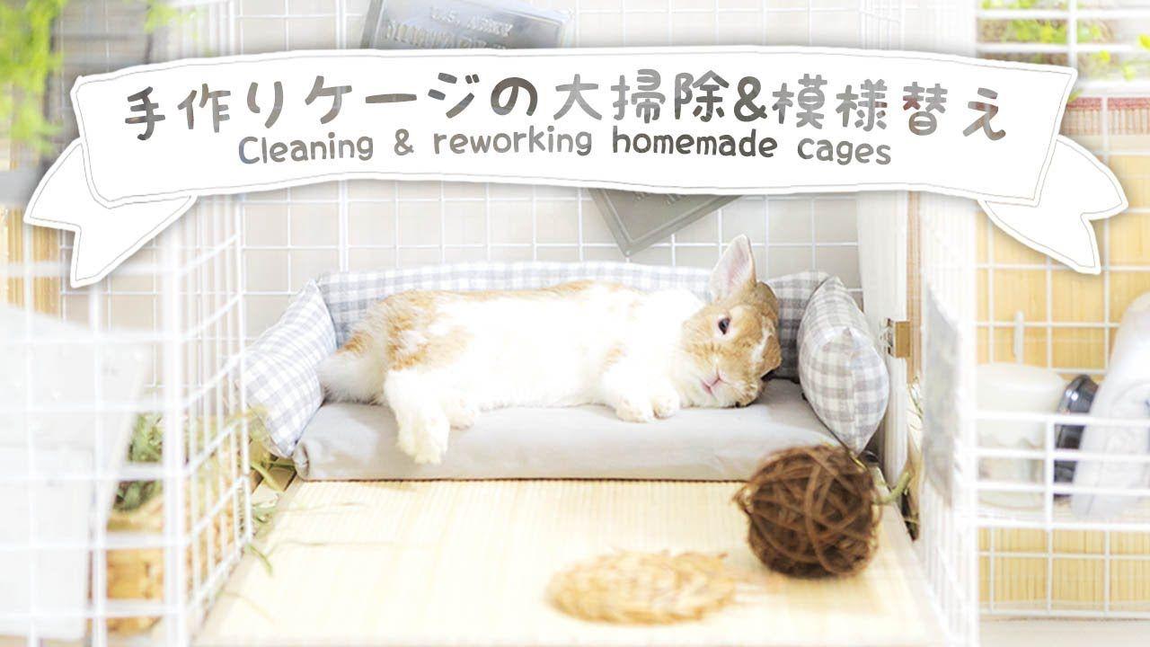 手作りケージの掃除 夏ver 模様替えの仕上がりチェックをするうさぎnoとら うさぎ ケージ ウサギのケージ うさぎ