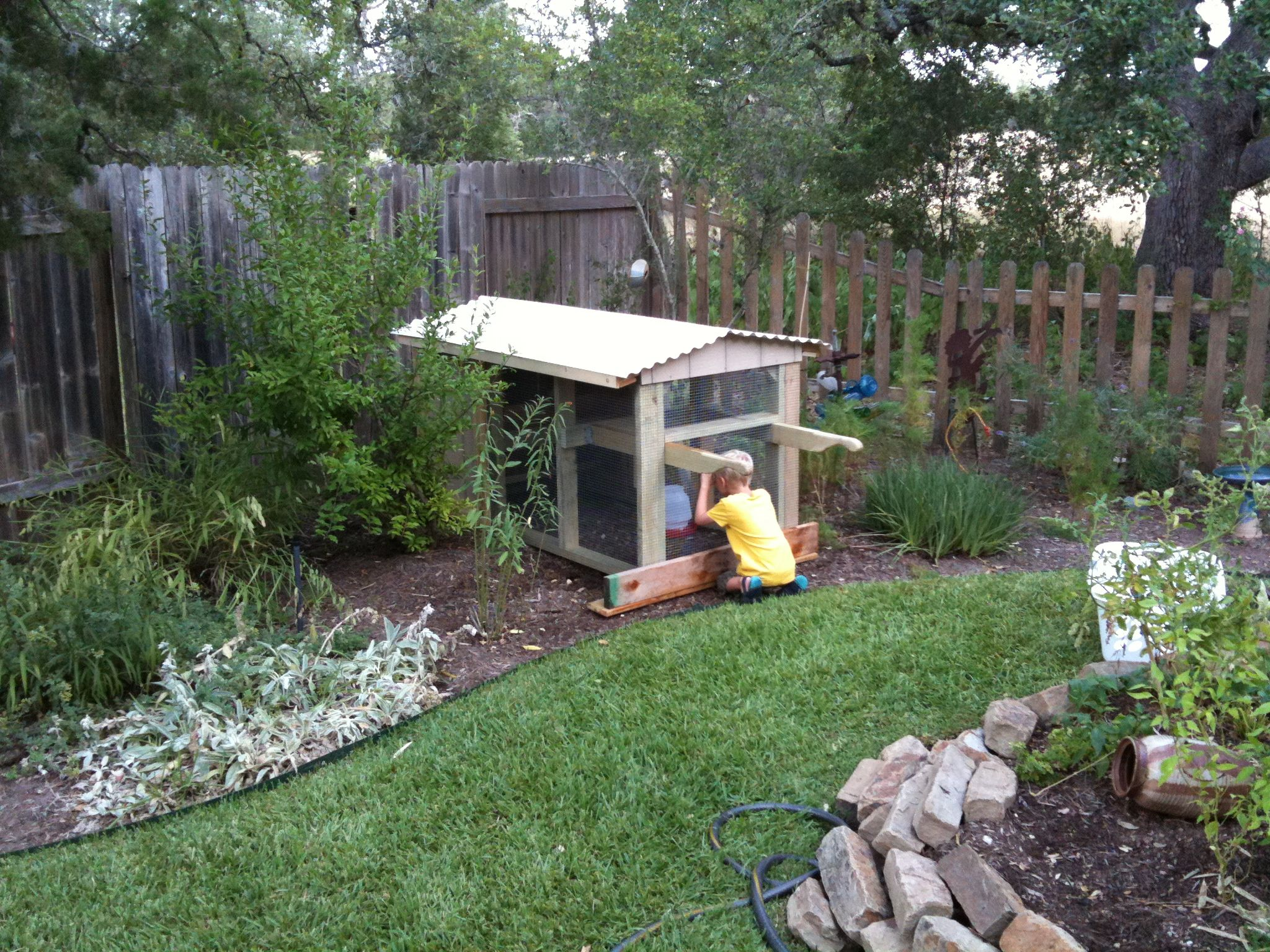 chicken coop coops chicken coup and backyard chickens