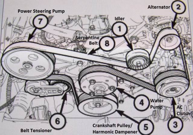 Serpentine Belt Schematic