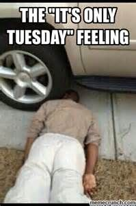 its only tuesday meme - Yahoo Search Results | school meme ...