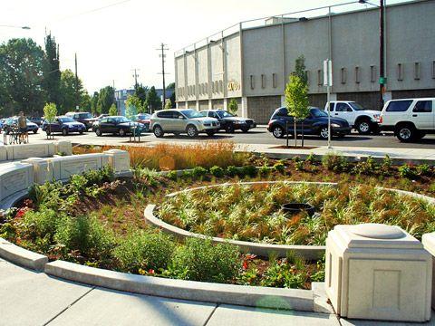 Bioretention Rain Gardens SF Better Streets Community garden