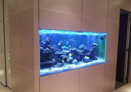pared acuario diseo acuario ideas acuario paredes de agua peceras acuarios casa ideas separadores de ambiente wand