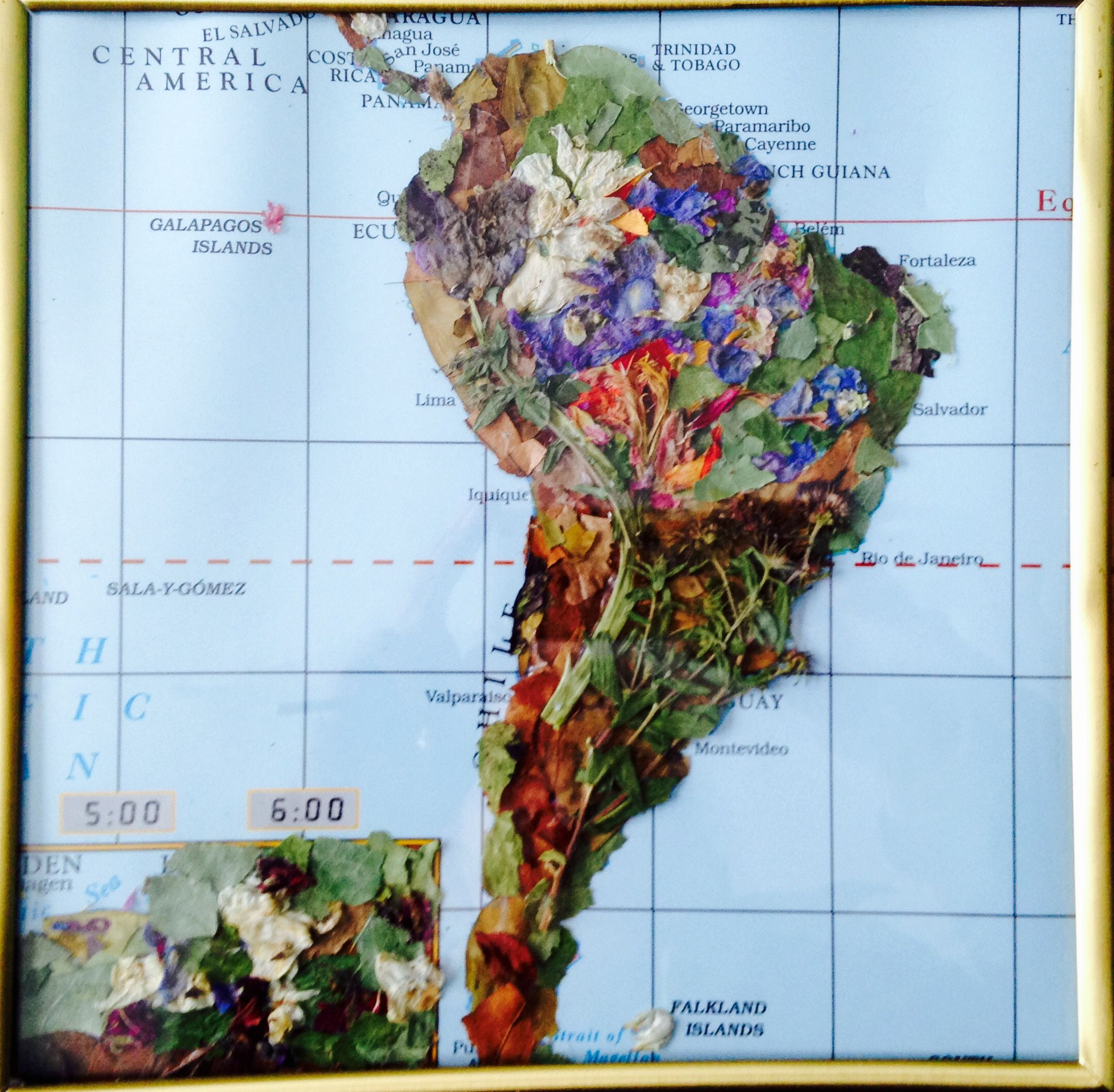 A Geographic Map Shows In Illustration Of A Physical Area On Earth - South america map physical