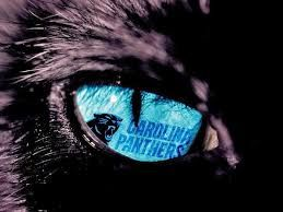 Images Of Carolina Panthers Football