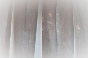Canción – Rubén Darío:  Amor tu ventana enflora | y tu amante esta mañana | preludia por ti una diana | en la lira de la Aurora. \ Desnuda sale la bella, | y del cabello el tesoro | pone una nube de oro | en la desnudez de estrella;| y en la matutina hora | de la clara fuente mana | la salutación pagana | de las náyades a Flora. \ En el baño al beso incita |  sobre el cristal de la onda| la sonrisa de Gioconda | en el rostro de Afrodita; | y el cuerpo que la luz dora,[...]