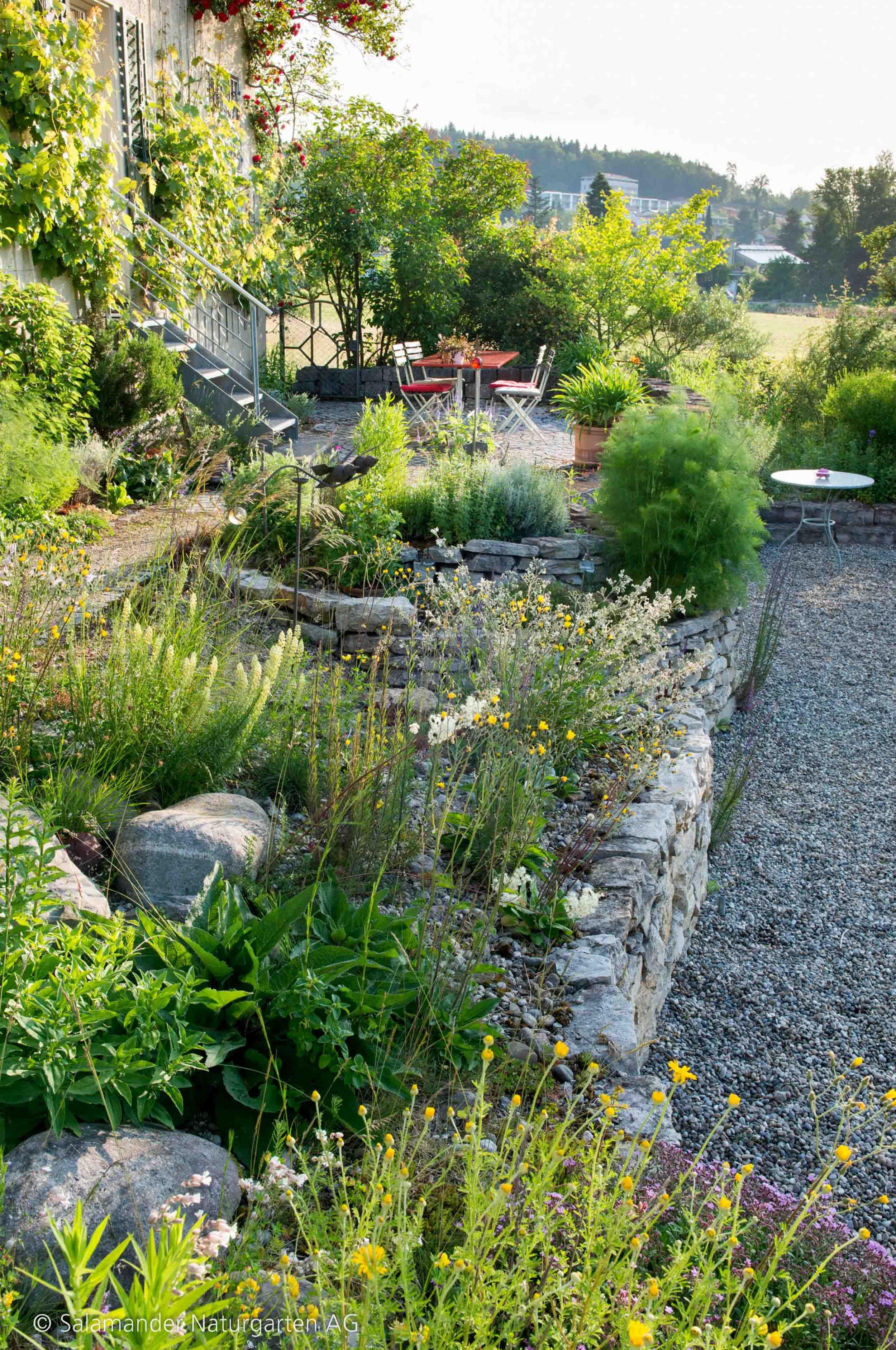Photo of Platz für Gewürze – Salamander Naturgarten AG