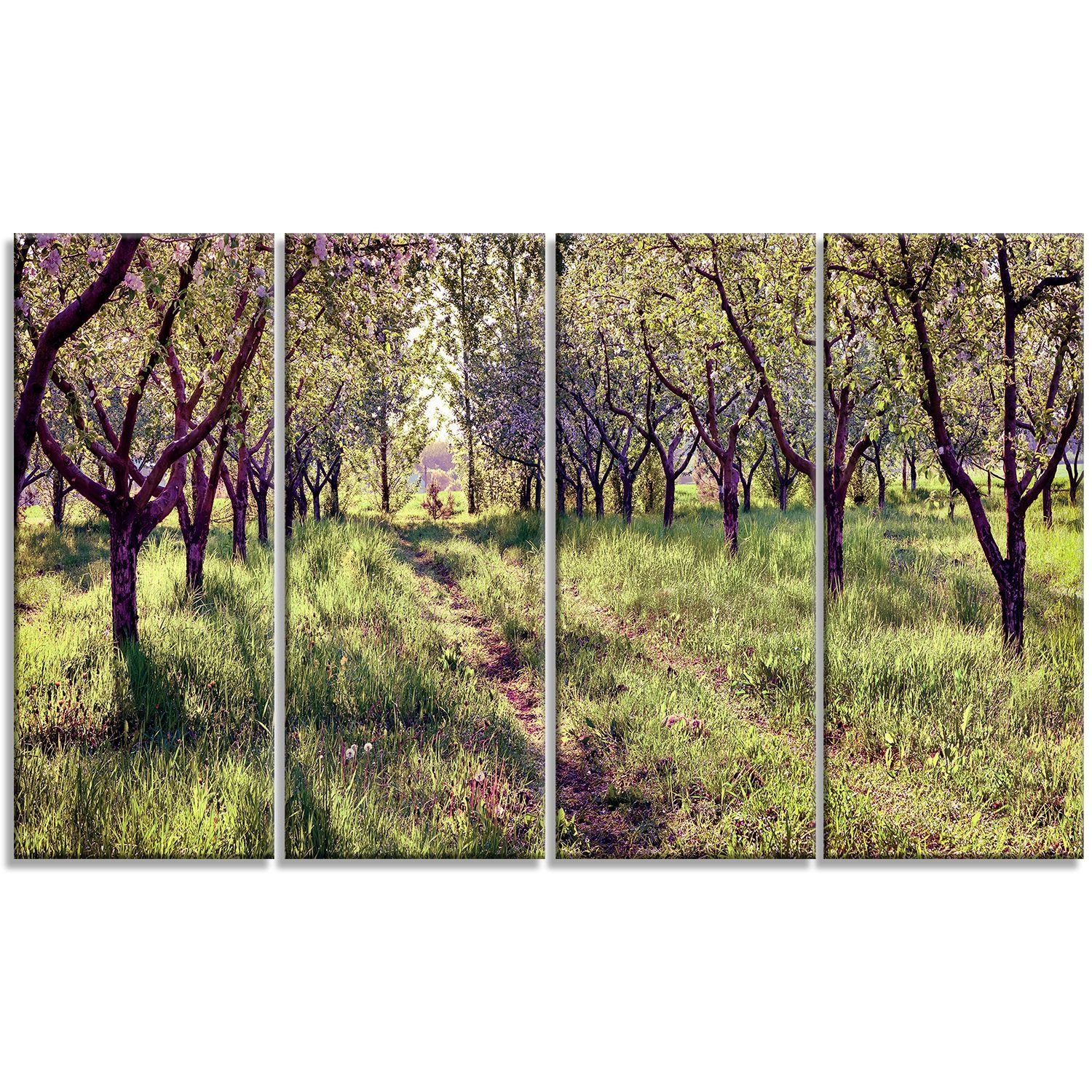 Designart blossom apples garden panels photography art print