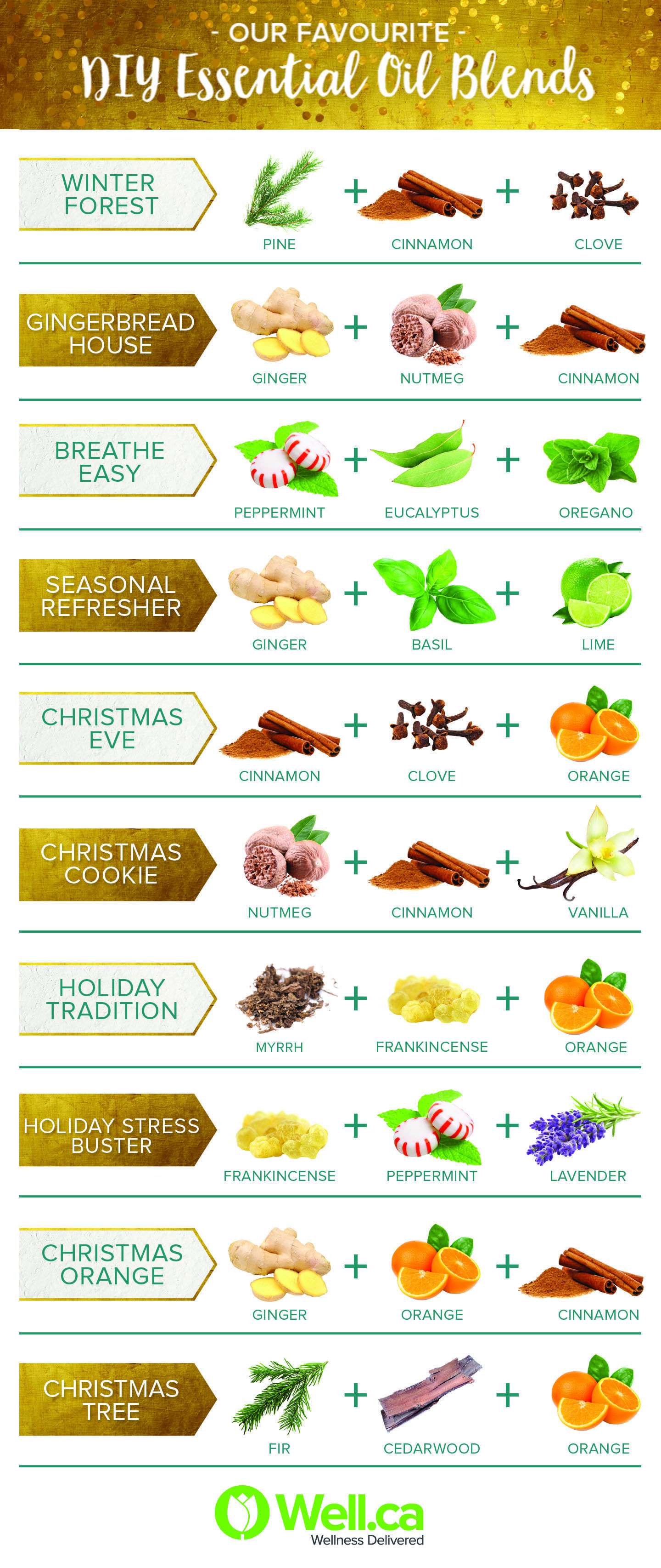 Check Out Our Favourite Holiday Diffuser Blends Over On The Well Blog