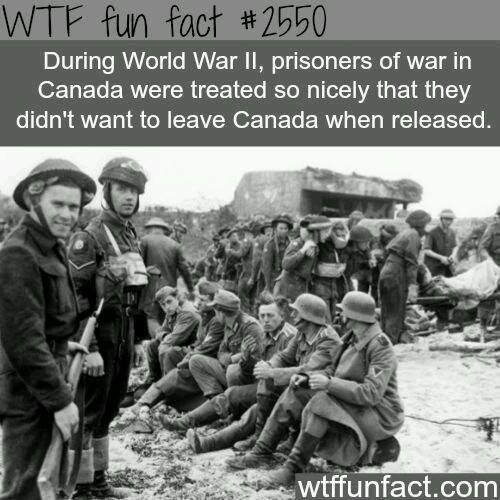 World War  Canadas Prisoners Fun Facts