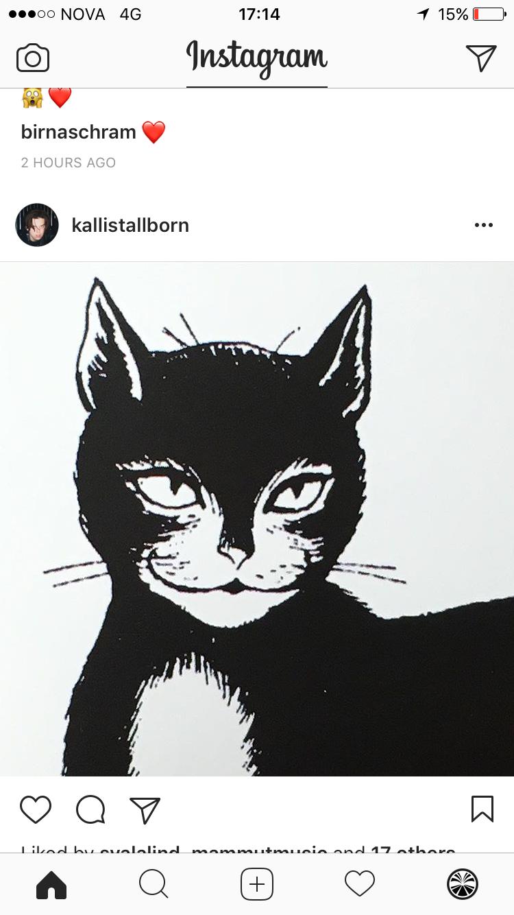 Pin by Rakel Thor on - yule cat - | Pinterest | Yule