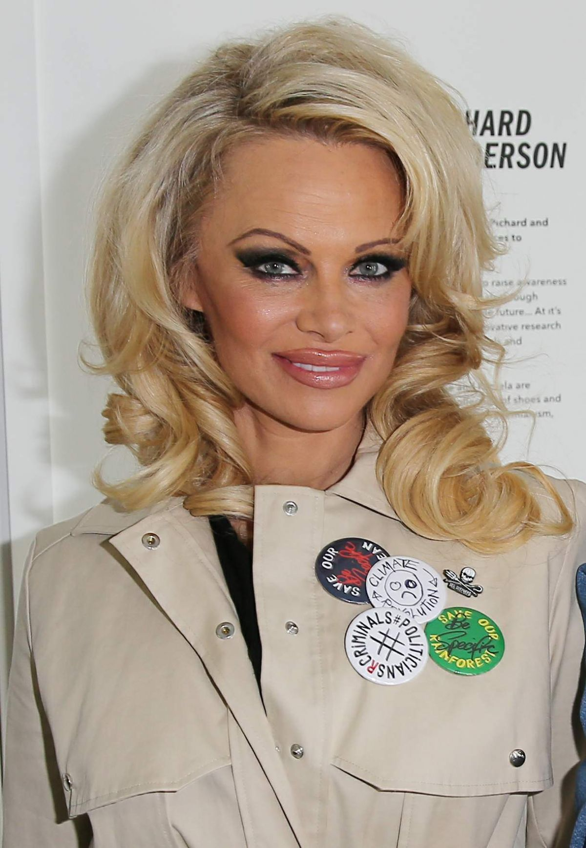 pam anderson updo hairstyles fade haircut. Black Bedroom Furniture Sets. Home Design Ideas