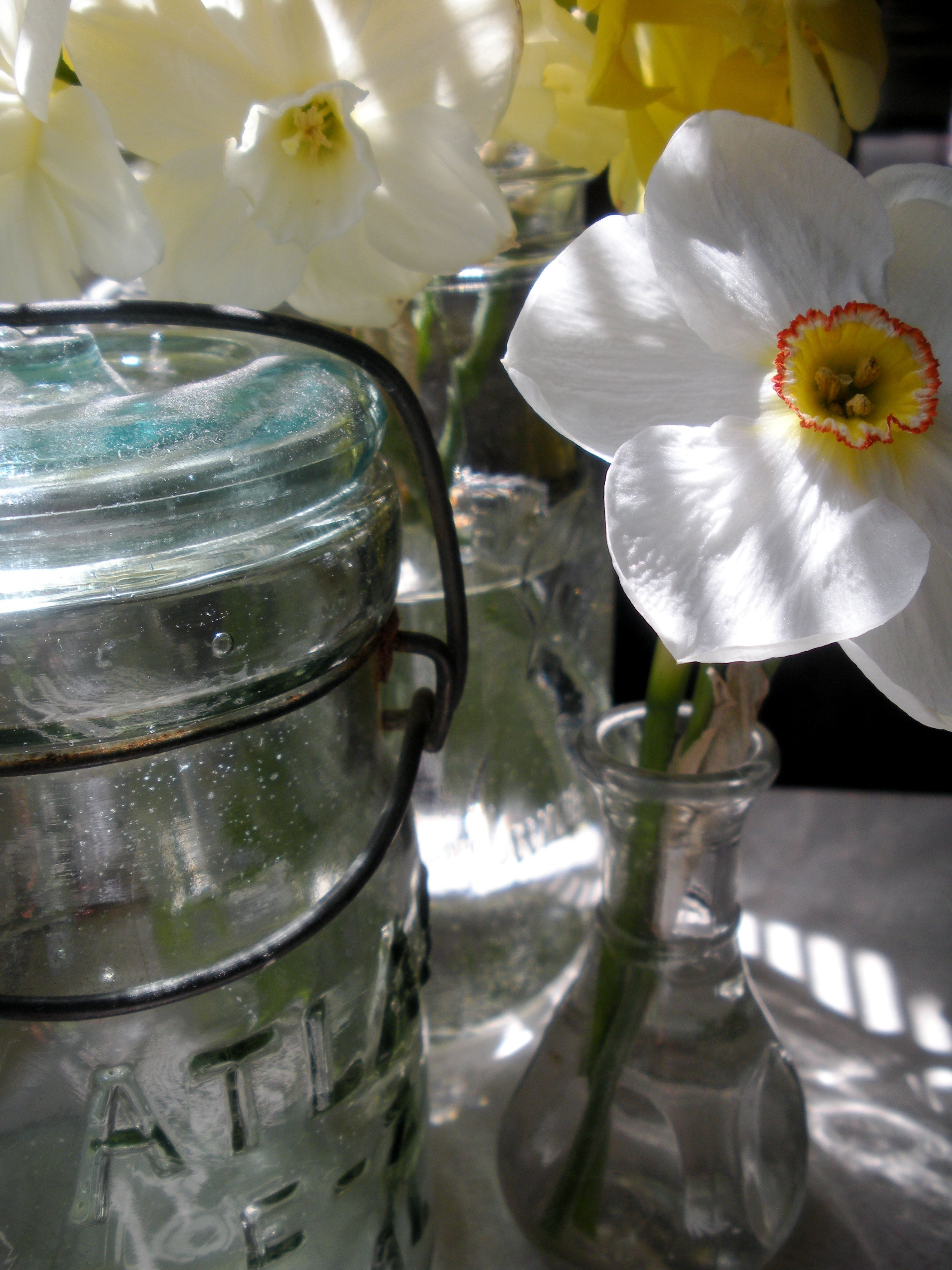 some eye candy and inspiration at my desk. #daffodils #masonjars #drool #imayhaveaproblem