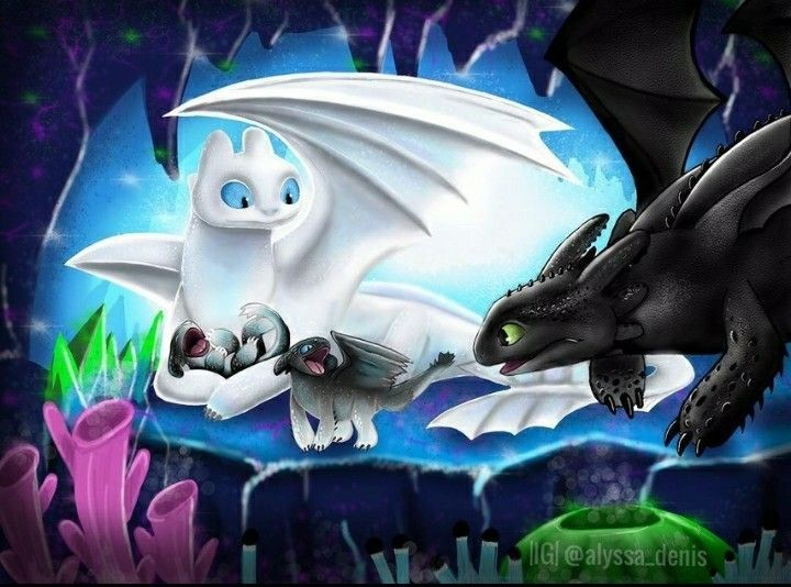 toothless and light fury with their half white and half black night