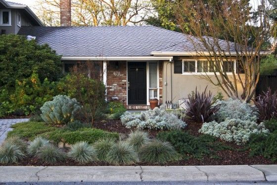 Julie Orr Design Front Yard No Grass Perennial Landscape Architecture