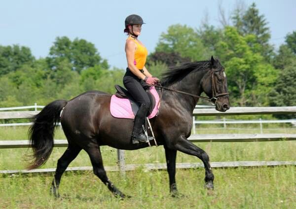 Over time, horseback riding can improve a rider's posture both in the ring and in daily life. :)