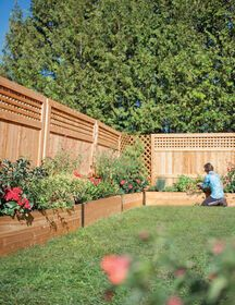 "Cedar Raised Beds 15"" Tall - Deep Root Cedar Raised Beds 2 Ft Wide"