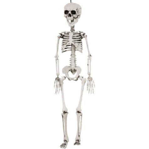 Plastic Skeleton 16in Party City Halloween Skeleton Decorations Halloween Skeletons Plastic Skeleton