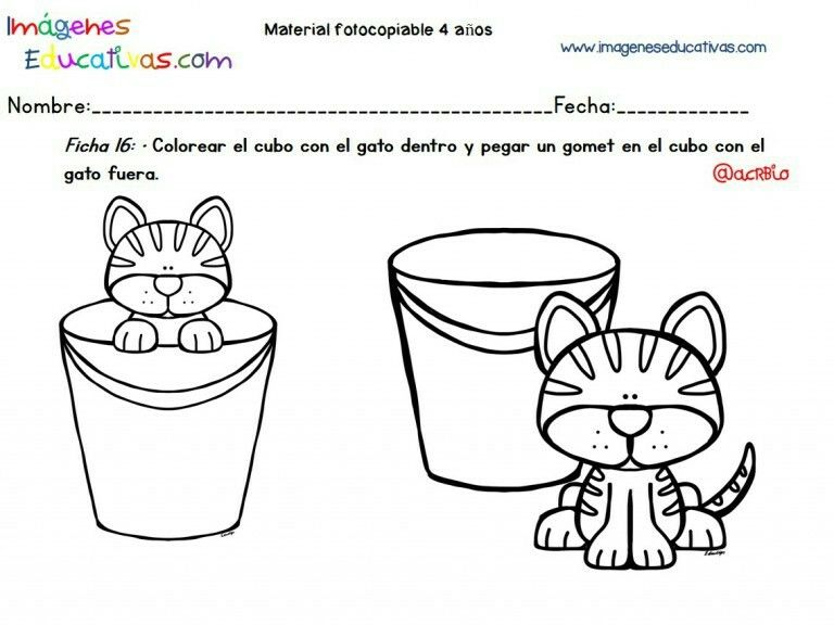 Conceptos Infantil Educacion Preescolar Imagenes Educativas