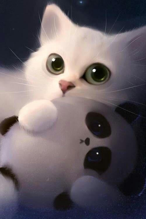 Cute Kitty Phone Wallpaper
