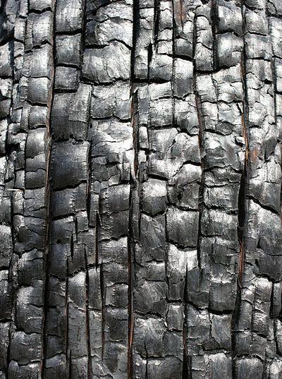 univers mininga mati re pinterest texture bois texture et bois. Black Bedroom Furniture Sets. Home Design Ideas