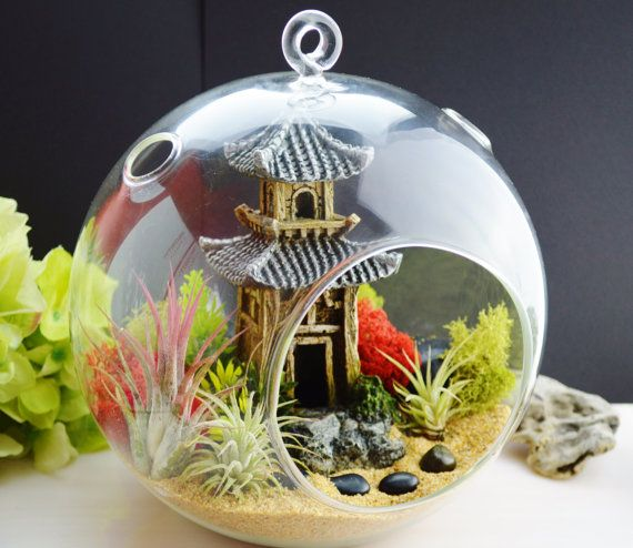 Japanese Garden Terrarium Kit ~ 3 Air Plants ~ Hangs Or Sits ~ Zen Garden ~  Peaceful ~ Miniature Garden ~ Garden Miniatures ~ Pagoda ~ Gift