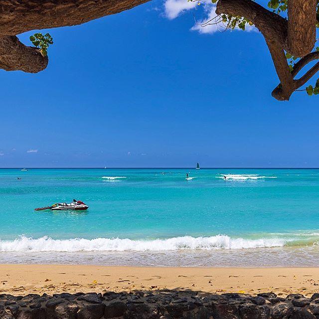 🌴🏡🌴 Mahalo @tburt50 Beautiful photography in Oahu, Hawaii 🤙🏼🌺🌴 💙 Waikiki Surf 2020 🏄🏽 . . Taken with Canon EOS R5 and RF 24-70 f/2.8 . . #Waikiki #Oahu #Hawaii #HNNSunrise #HaveAlohaWillTrav... Hawaii Luau Company- Hawaii's Premiere Corporate Event, Luau, Wedding and Entertainment Company. www.hawaiiluaucompany.com #hawaiiluaucompany#huakailuau #huakai #waikiki🌺 #mauiisland #waikikibeaches #waikikiphotography #honolulu #waikiki #hawaiibound #hawaiilove #oahuweddingplanner #oahuevents