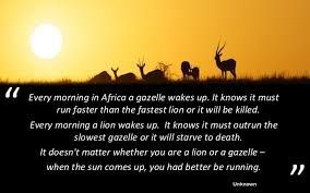 Every Morning In Africa A Gazelle Wakes Up