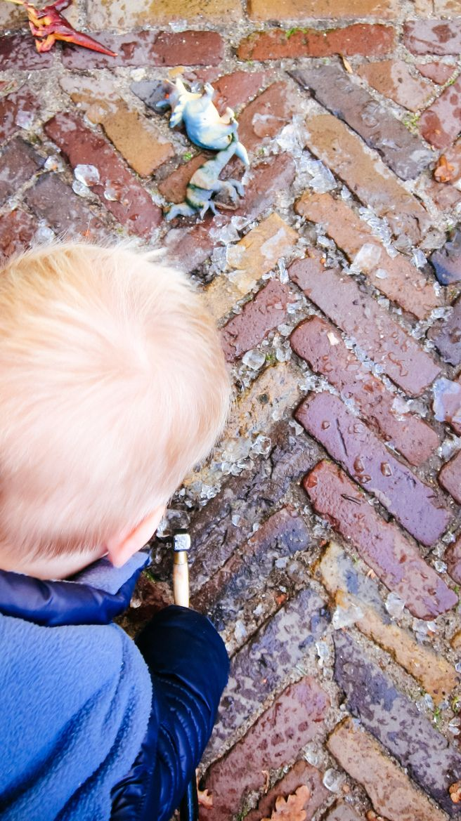 Hakken met ijs- - dinosaurs- diy- diy kids- diy boys- diy ice- ijs winter- http://www.mylucie.com