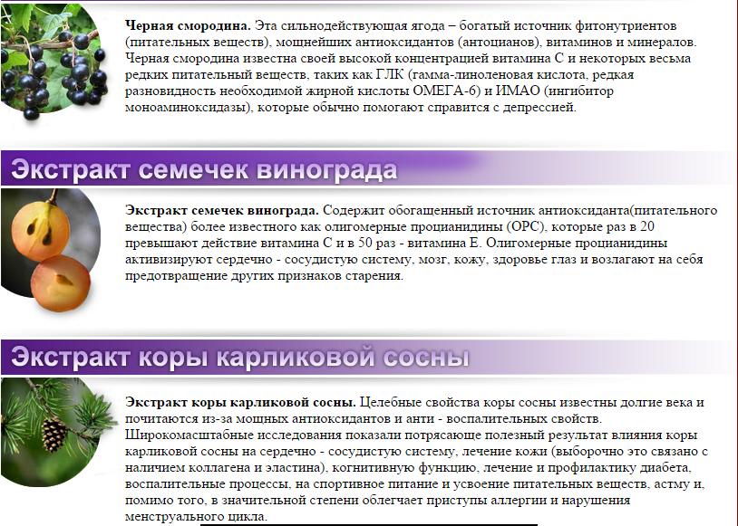 пластырь при простатите купить в новосибирске