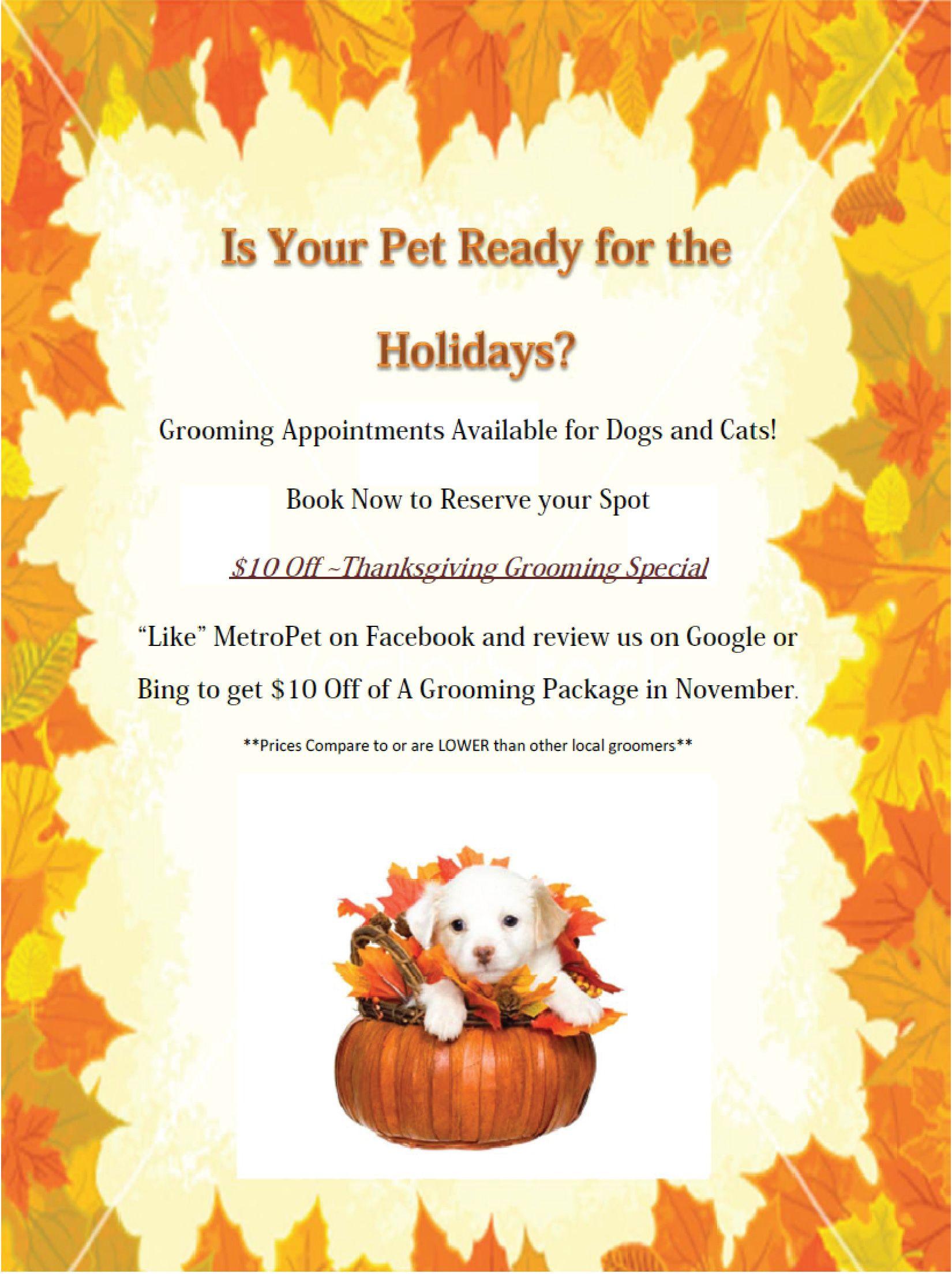 MetroPet Veterinary Clinic Thanksgiving Grooming Specials