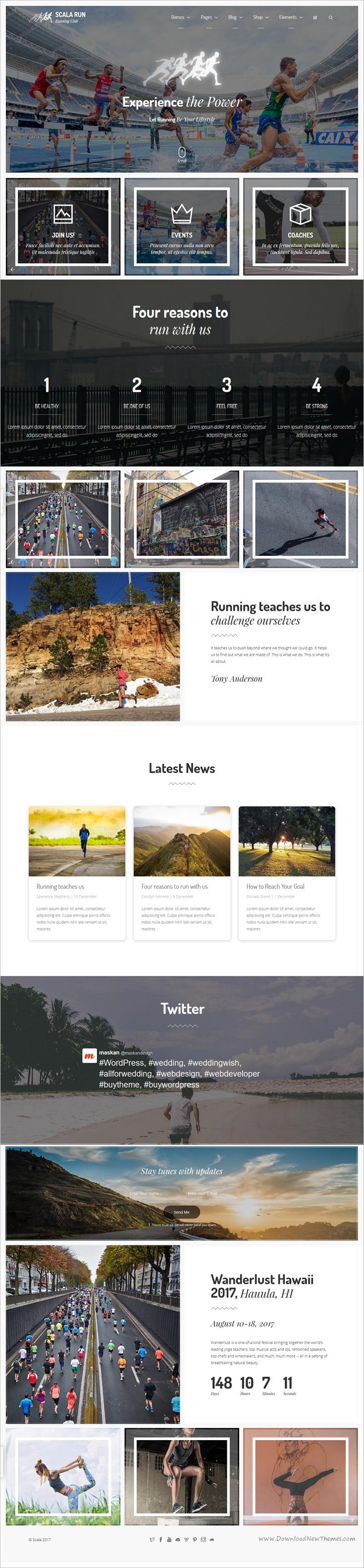 Scala | Multi-Purpose Onepage - Multipage Template | Pinterest ...