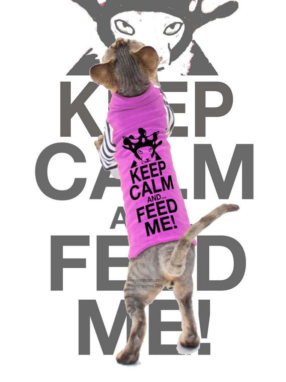 Pet Clothes Keep Calm and Feed me Sphynx cat clothes Costume for Pets Strange striped Sleeves dog clothes Custom Cat Clothes by SimplySphynx #etsy #etsyseller #simplysphynx #sphynx #sphynxcat #sphynx #catclothes #sphynxcatclothes