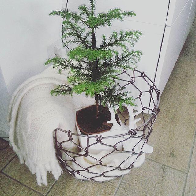 Ikea Silvester die schöne weihnachtszeit ist noch gar nicht richtig rum schon