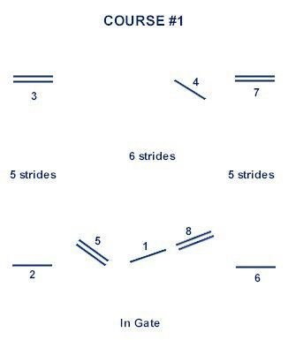 Image result for Beginner Show Jumping Course Plan ...